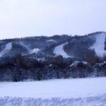 MLK Ski Weekend Black Ski Weekend 10 bedroom executive chalet mountain view
