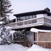 MLK Ski Weekend Black Ski Weekend at Blue Mountain 6 bedroom chalet outside view