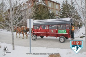 MLK Ski Weekend 2016 horse drawn carriage
